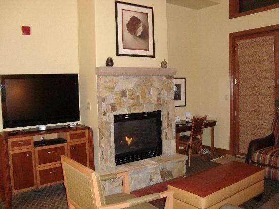Valdoro Mountain Lodge: Living area with flat screen and fireplace