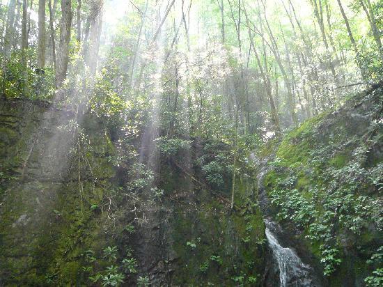Backbone Rock Waterfall照片