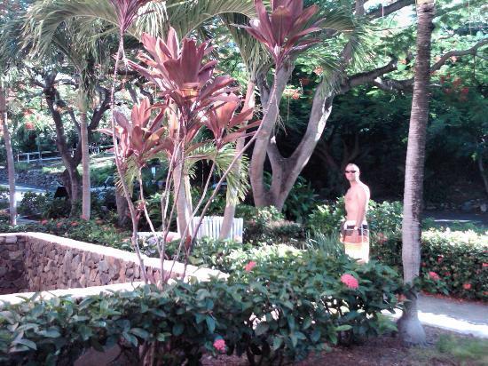 Secret Harbour Beach Resort: Just outside our front door.