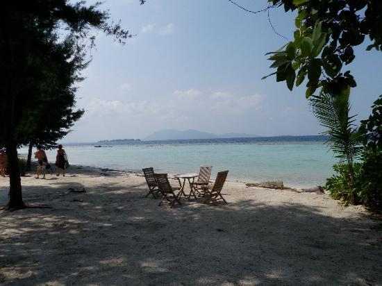 Kura Kura Resort: Private beach in front of the villas