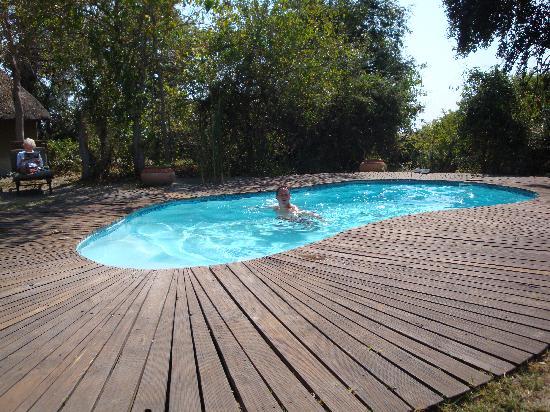 Pom Pom Camp: The Pool