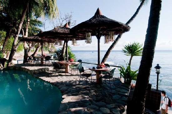 Portofino Beach Resort : Morning View