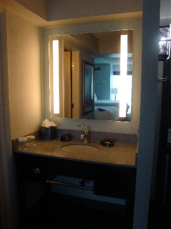 Crowne Plaza Tampa Westshore: Loved the mirror and outside of the shower area