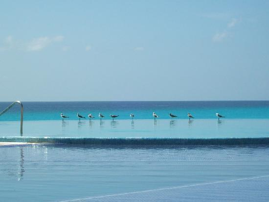 Live Aqua Beach Resort Cancun: view from the room which is next to the VIP lounge