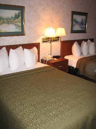 Quality Inn Christiansburg: room2