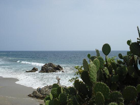 Quinta Lili: El mar y los nogales