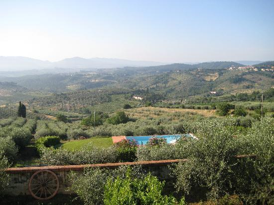 Villa Monteoriolo: One of the views from the villa