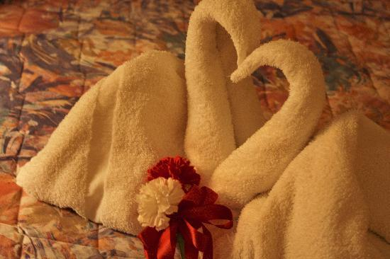 Ritz Inn Niagara & Wedding Chapel: The heart swans in the honeymoon suite