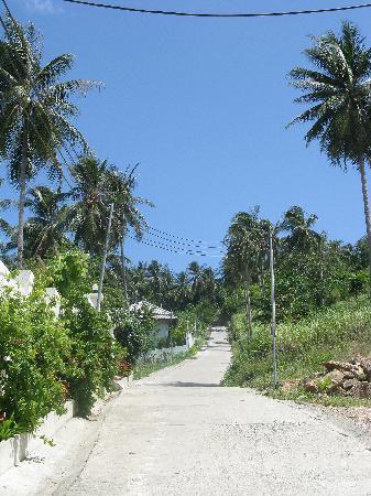 Pema Djougne: la chemin qui mène à Pema