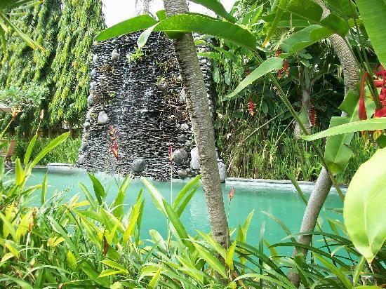 Tunjung Mas Resort Ubud: la piscine