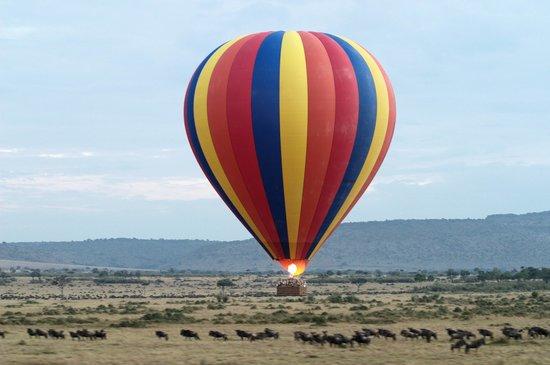 Rekero Camp, Asilia Africa: Governor's Camp Balloon Ride