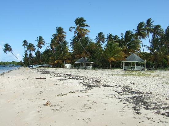 Buccoo, Tobago: Pigeon Point