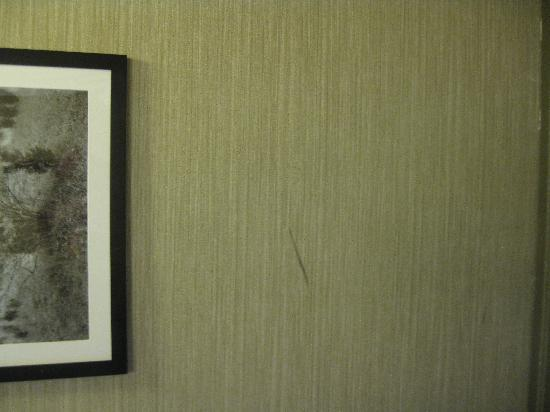 Envoy Club Suites: wall dirt