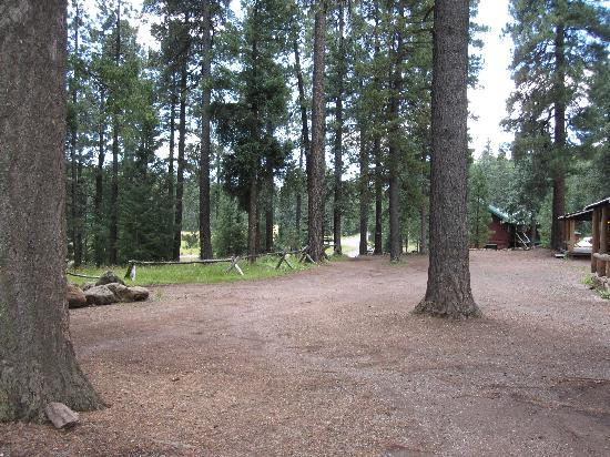 Hannagan Meadow Lodge: View from the Porch