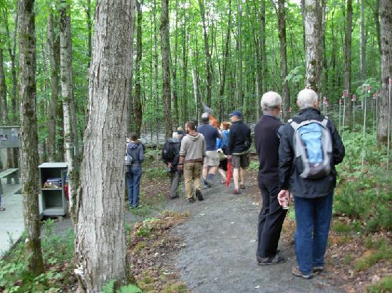 Val David, Canada: balade dans les sentiers