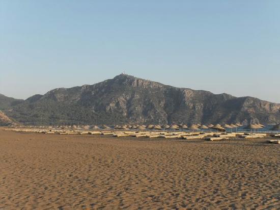 Aydos Club: The Beach at sunset