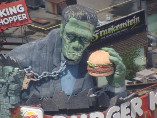 Burger King : view of frank from the Skywheel
