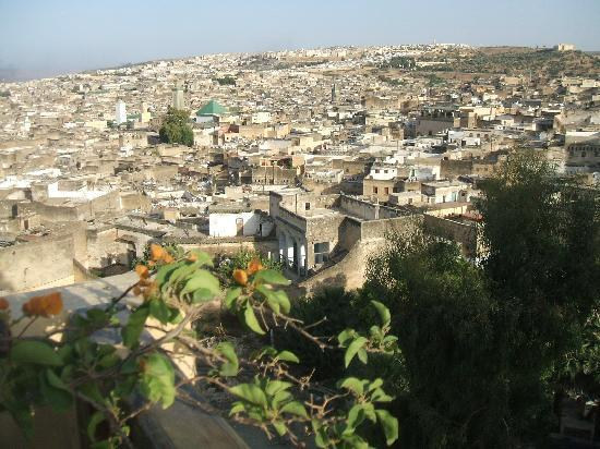 Dar Roumana: The view from the roof terrace