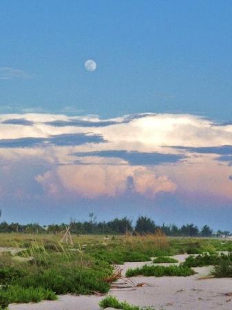 Sanibel Island Photo