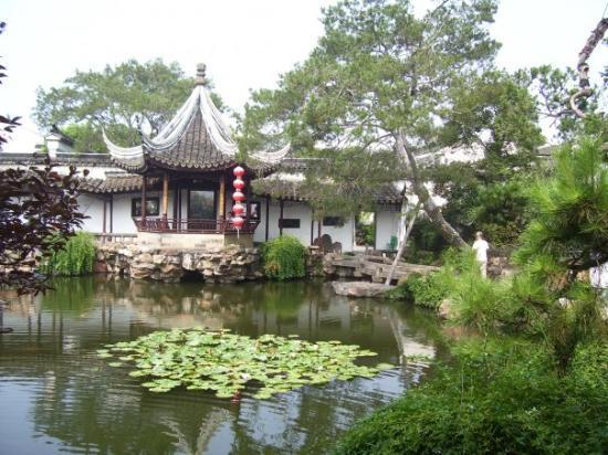 Humble Administrator's Garden: giardino dell'amministratore umile  26-8-09 Suzhou