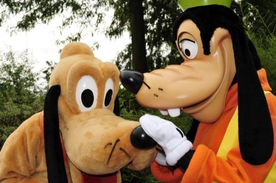 Disneyland Park: Hola pluto guau guau goofy!