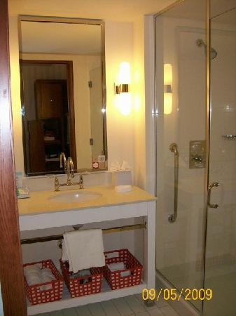 Four Points by Sheraton Columbus Ohio Airport: Bathroom