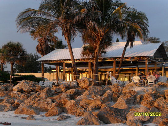 Beach house restaurant where the ceremony was held under the palm trees