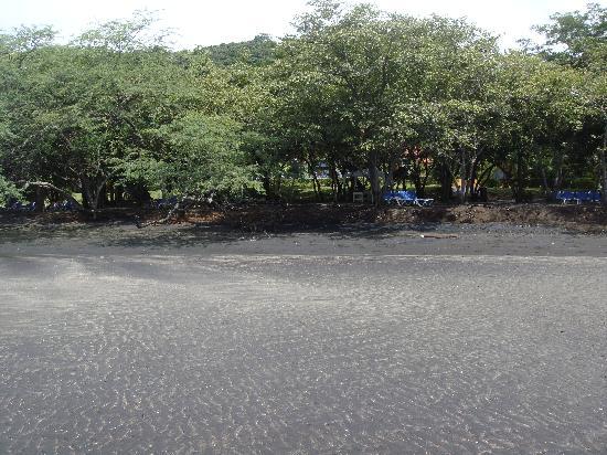 Allegro Papagayo: Empty black sand beach. Not very beachy