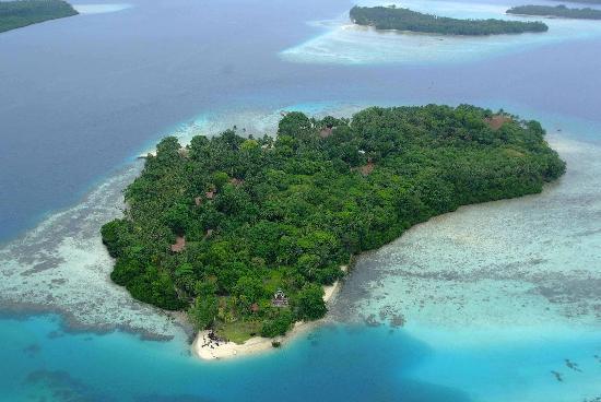 Tavanipupu Island Resort: helicopter  ferry