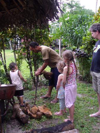Safua Hotel : coconuts