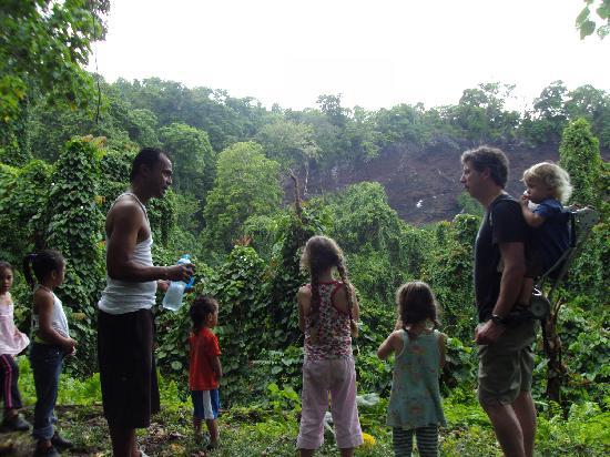Safua Hotel : rainforest walk
