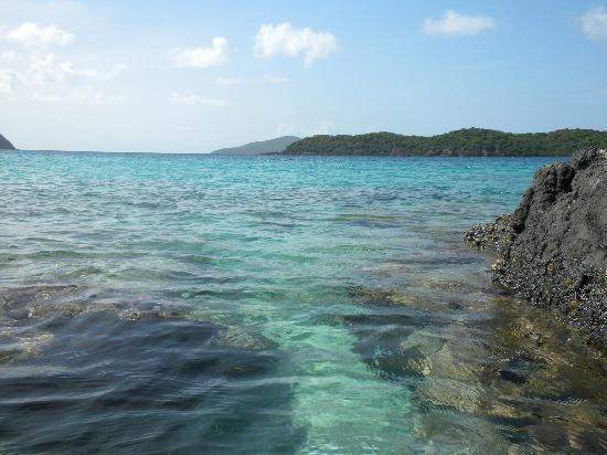 Marriott's Frenchman's Cove: Coki Beach Coral