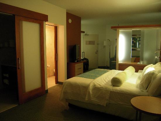 SpringHill Suites Cincinnati Midtown: guest room w/side-by-side toilet and shower (sliding doors)
