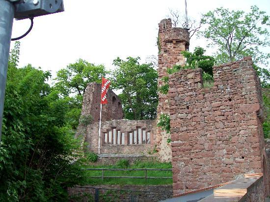 Klingenberg, Germany: Clingenberg castel ruins - nice restaurant up there!
