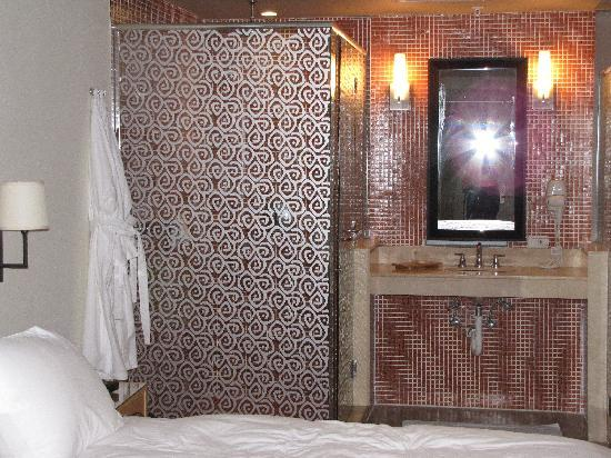 Hotel Aladdin: Romantic shower