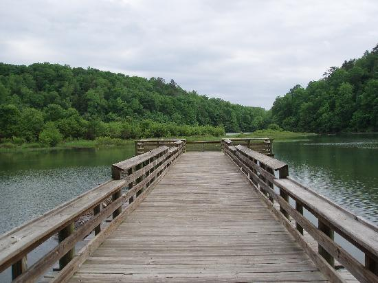 Double Springs, AL: View from Brushy Lake Fishing Pier