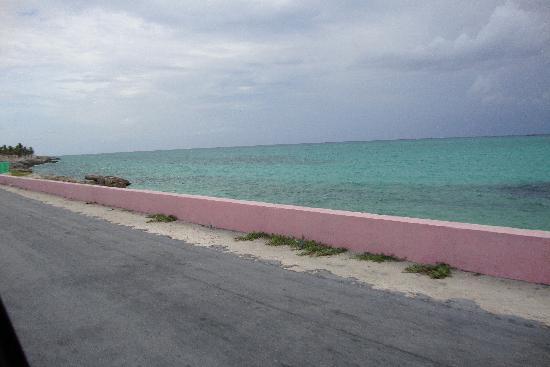 Andros Beach Club: Did I say private beach, or didn't I?