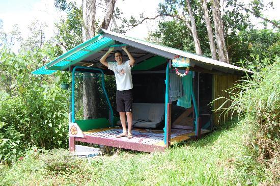 Hedonisia Hawaii Sustainable Community : The Oceanview Hut