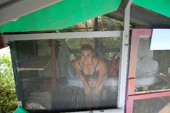 Hedonisia Hawaii Eco-Community Vacation Rentals: Me in the hut