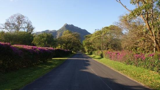 El Valle de Anton, Panamá: Jour 20 - Maintenant à El Valle! Je me promène beaucoup. Je vais à la chute du village, je vais
