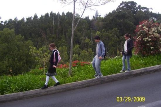 Madeira, Portugal: Y despues de subir... hay que bajar