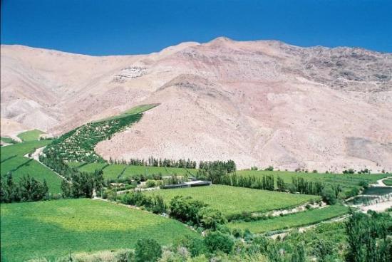 Pisco Elqui, Chile: Valle del Elqui
