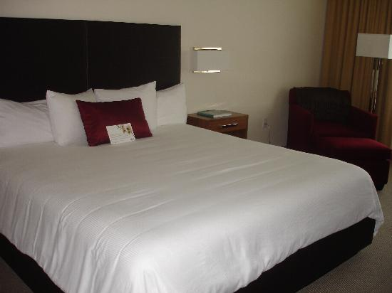 I Hotel and Conference Center: King bed