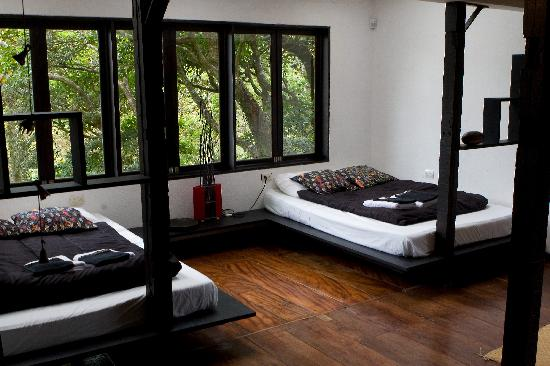 TreeTop House: My favorite room in the house.