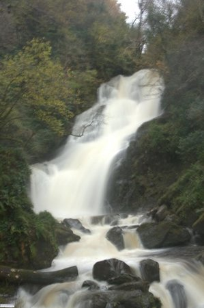 Bottom of Torc Waterfall -  Killarney