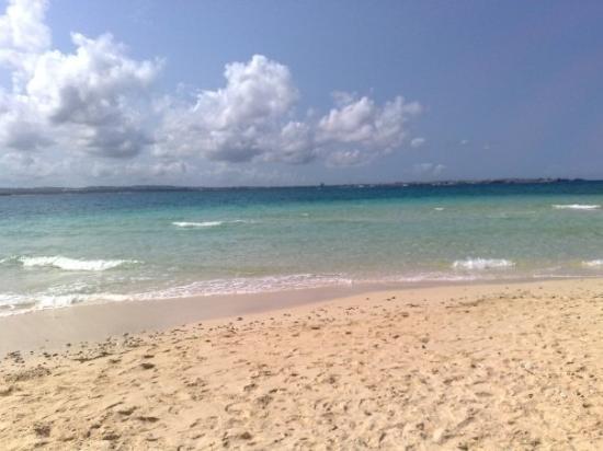 Prison Island - Changuu Private Island: Spiaggia di Prison Island