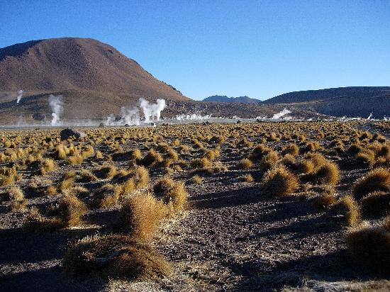 Alto Atacama Desert Lodge & Spa: Geiser am Tatio frühmorgens