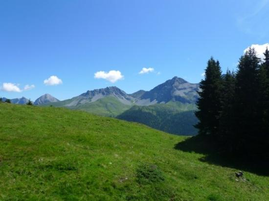 Arosa im Summer Picture of Arosa Canton of Graubunden TripAdvisor