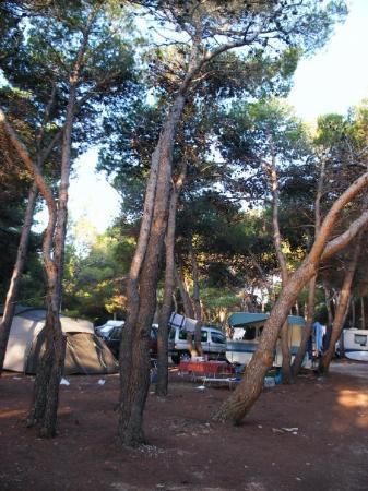 Premantura, โครเอเชีย: camping stupice