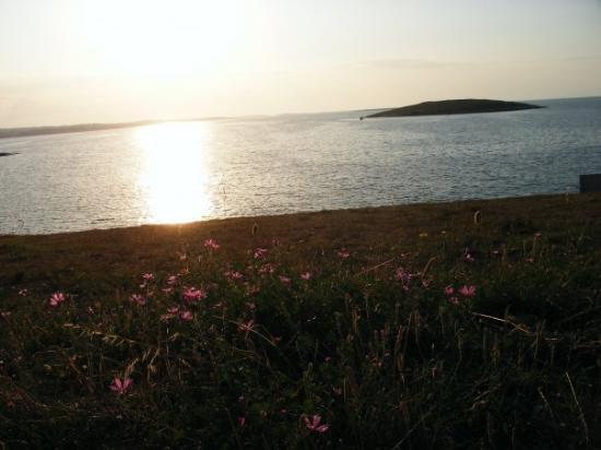 Premantura, Croazia - camping stupice